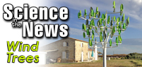 Wind Trees Generate Electricity