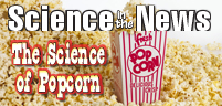 The Science of Popcorn