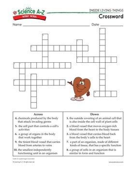 Science a z inside living things grades 5 6 science unit crossword analogiesfill in the blank word sort ccuart Choice Image